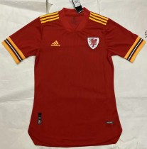 player version add+$5 2020 Wales home soccer jersey size S-XXL