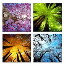 Amosi Art-4 Panels Canvas Wall Art Spring Summer Autumn Winter Four Seasons Landscape Color Tree Painting Picture Prints Modern Giclee Artwork  for Living Room Home Decoration
