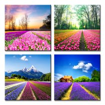 Amosi Art-4 Panels Tulip and lavender Field Wall Art Colorful Flowers Canvas Painting  for Modern Home Decoration