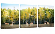 Amosi Art-Canvas Wall Art Painting Autumn White Birch Forest Landscape Picture Deer Animals and Sea Gull flew Picture Prints on Canvas Framed Ready to Hang for Living Room Home Decorations