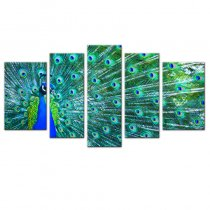 Amosi Art-5 Pieces Modern Canvas Paintings a peacock in his pride of Picture For Home Decoration