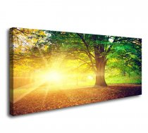 Amosi Art-Canvas Prints Framed Wall Art Trees and Sunsea Paintings Printed Pictures Stretched for Home Decoration