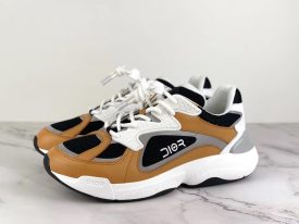 Dior Sneaker New colour,High quality