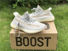 Adidas Yeezy Boost 350 V2  Synth  basf