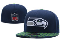 NFL Seattle Seahawks Cap (12)