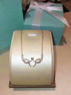 Tiffany Necklace (671)