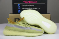 "Authentic Y 350 V2 ""Marsh"""