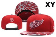 NHL Detroit Red Wings Snapback Hat (25)