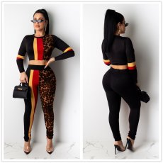 Leopard print pants long sleeve two piece set