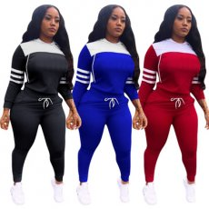Two piece sports and leisure Hoodie