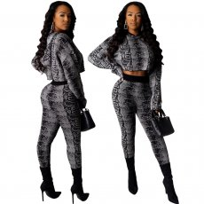 Fashion printed casual Hoodie two piece set