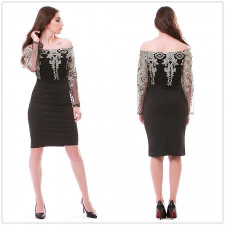 Screen lace embroidered dress