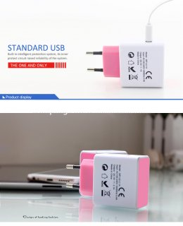 Wall Charger Euro Type