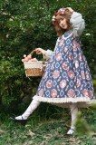 Owl ~Printing Lolita Doll Dress