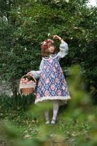 Owl ~Printing Lolita Doll Dress