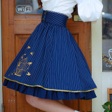 Classic striped lace embroidered skirt
