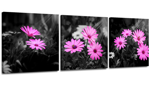 Modern Canvas Wall Art Painting African Daisy  Flower With Black and White Background Pictures Canvas Print Artwork Framed for Bathroom Bedroom Decor