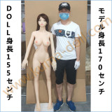 Doll forever 155cm E-Cup Molly