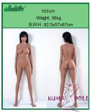 TPE製ラブドール Jarliet Doll 163cm Cカップ Hannah