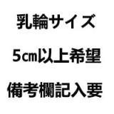 フルシリコン製ラブドール ILDoll 156cm Bカップ #19 Hiromi