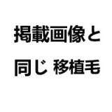 シリコン製頭部+TPEボディ JY Doll 164cm 小贤