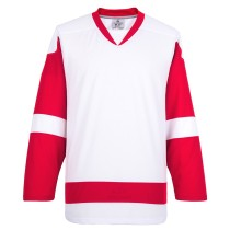 ON SALE! Detroit Red Wings Blank Hockey Jerseys E008
