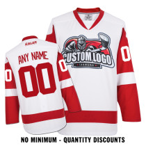 Custom Your Hockey Jerseys (Any Logo Any Number Any Name) Detroit Red Wings White ECD12
