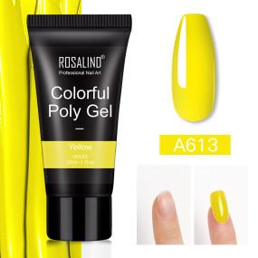 Rosalind 30ML Rainbow Poly Gel Nail