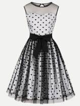 Polka Dots Print Contrast Mesh Embroidered Party Dress