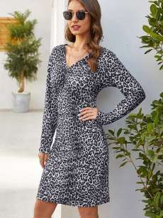 V Neck Leopard Print Long Sleeve Fitted Dress