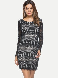 Black Long Sleeve Bodycon Lace Dress