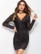 Lace Overlay Backless Bodycon Dress