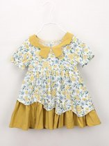 Toddler Girls Floral Color Block A-line Dress