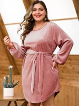 Plus Size Pink Velvet Dress