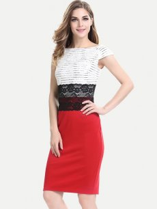 Color Block Lace Work Pencil Office Dress