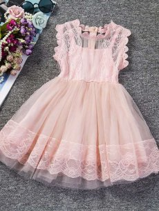 Toddler Girls Lace Solid Color Tulle Sleeveless Gown Dress