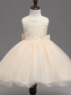 Toddler Girls Lace Mesh Solid Color Back Bowknot Tulle Sleeveless Gown Dress