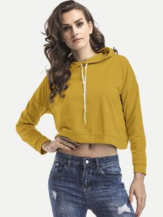Solid Hoodies Plain Crop Hooded Sweatshirt