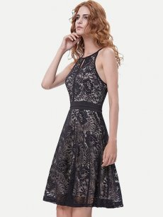 Halter Sleeveless Lace Skater Dress