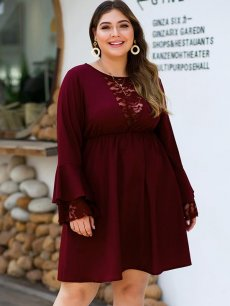 Plus Size Ruffle Sleeve Lace Dress