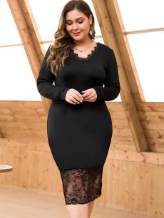 Plus Size Black Lace Fitted Dress