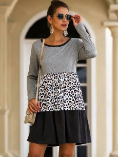 Leopard Print Color Block Mini Dress