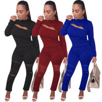 Women Solid Color Long Sleeves Zipper Burn-out Casual Club Outfits