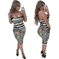 Sexy Women Spaghetti Strap Stripe Floral Print Back Slit Dress