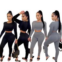 Women's Solid Color Long Sleeve Crop Top Casual Bodycon Long Pants Set 2pcs
