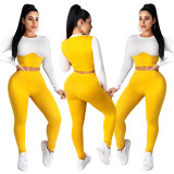Women Long Sleeve Color Block Crop Top Long Skinny Pants Casual Bodycon Outfits