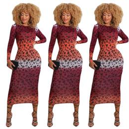 Women Long Sleeve Gradient Leopard Print Round Neck Slim Casual Club Dress