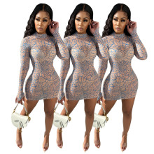Women Sexy Stylish Long Sleeve Printed Perspective Mesh Zipper Bodycon Dress