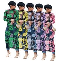 (ebay price:$17.67)Women Long Sleeves Mesh Sheer Floral Print Bodycon Club Party Casual Long Dress