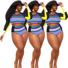 (ebay price:$19)Plus Size Women Long Sleeve Crop Top Stripe Print Bikini Set Beach Swimwear